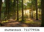 sunbeam sun sunlight forest... | Shutterstock . vector #711779536