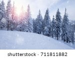 winter mountain snowy forest | Shutterstock . vector #711811882