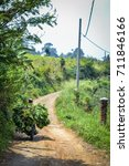 Small photo of A farmer is bringing his harvest with motorcycle along the hot and long winding road