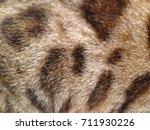 texture | Shutterstock . vector #711930226