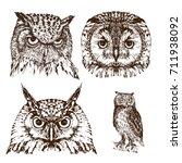 Hand Drawn Owl Portraits Set ...