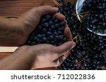female hands holding aronia... | Shutterstock . vector #712022836