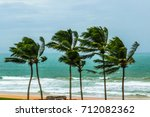 Small photo of Bunch of coconut trees at coast were bend due to strong wind comming through the sea