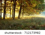 trees on the lawn  autumn | Shutterstock . vector #712173982