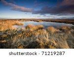 Frozen Moorland Pool