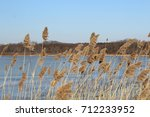 Small photo of Hundred acre pond.Sun lit grass on edge of pond. Blue water and blue sky. Trees lining the other side of the pond. Mendon, New York