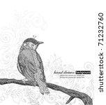 Hand Drawn Bird On Branch.