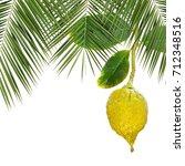 yellow ripe etrog. symbol for... | Shutterstock . vector #712348516