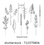 set of hand drawn stylized... | Shutterstock .eps vector #712370806