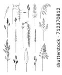hand drawn sketches of grass...   Shutterstock .eps vector #712370812