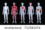 different systems of human body ... | Shutterstock .eps vector #712581076