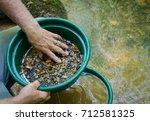 gold panning and gem mining. ... | Shutterstock . vector #712581325