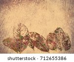 close up autumn dry leaves on... | Shutterstock . vector #712655386