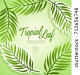set of tropical leaves   vector ... | Shutterstock .eps vector #712656748