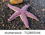 a lilac starfish lies on black... | Shutterstock . vector #712805146