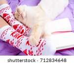 Stock photo cute photo of woman s feet with christmas slippers top view point cozy comfy soft next white 712834648