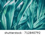 tropical leaves  dark green... | Shutterstock . vector #712840792