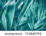 Tropical Leaves  Dark Green...