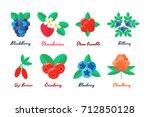 vector illustration. set...   Shutterstock .eps vector #712850128