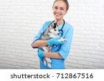 Stock photo beautiful young woman professional vet smiling joyfully holding adorable little husky puppy posing 712867516
