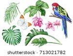 set of hand drawn watercolor... | Shutterstock . vector #713021782