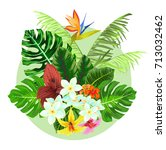 colorful tropical plants design | Shutterstock .eps vector #713032462