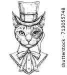 cat wearing cylinder top hat... | Shutterstock .eps vector #713055748
