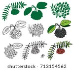 illustration on a white... | Shutterstock .eps vector #713154562
