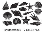 Vector Set Of Different Shells...