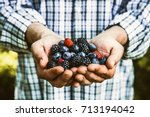 organic fruit. farmers hands... | Shutterstock . vector #713194042