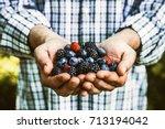 organic fruit. farmers hands... | Shutterstock . vector #713194042
