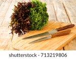 fresh lettuce leaves of...   Shutterstock . vector #713219806