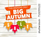 autumn sale poster of discount... | Shutterstock .eps vector #713255122