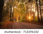 autumn  fall scene. autumnal... | Shutterstock . vector #713296102