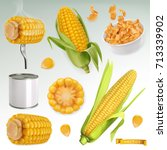 corn cob  grains  corn flakes.... | Shutterstock .eps vector #713339902