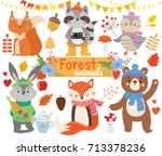 set of forest  animals. autumn