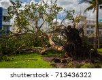usa. florida. miami beach ... | Shutterstock . vector #713436322