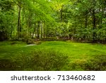 A Mossy Garden Area At...
