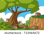 forest scene with many... | Shutterstock .eps vector #713464672