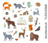 vector set of woodland animals... | Shutterstock .eps vector #713510308