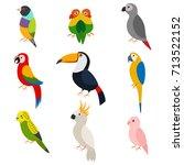 parrots vector cartoon set ... | Shutterstock .eps vector #713522152