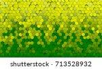 yellow and green gradient... | Shutterstock . vector #713528932