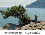 view from cape plaka to ayu dag ...   Shutterstock . vector #713533822