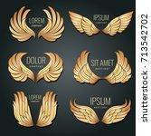 Golden Wing Logo Vector Set....