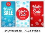 Winter Sale Vector Poster Or...