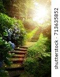 beautiful peaceful landscape ... | Shutterstock . vector #713635852