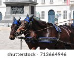 fiaker at hofburg palace in... | Shutterstock . vector #713664946