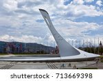 sochi  adler   russia   august... | Shutterstock . vector #713669398