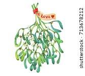 Mistletoe Bouquet With...