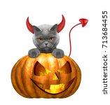 halloween pumpkin with cute cat ... | Shutterstock . vector #713684455